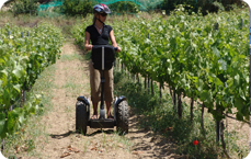 Wine Tours Segway